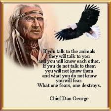 animals talk