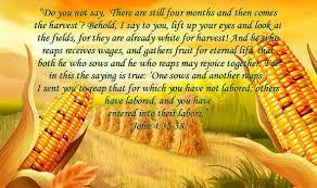 harvest1