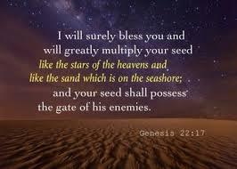 Seed the heavens