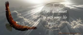 manhood eagle