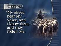 obey hear voice