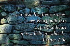 living stones rough