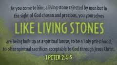 living stones text