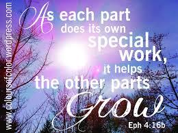 Eph 4-16