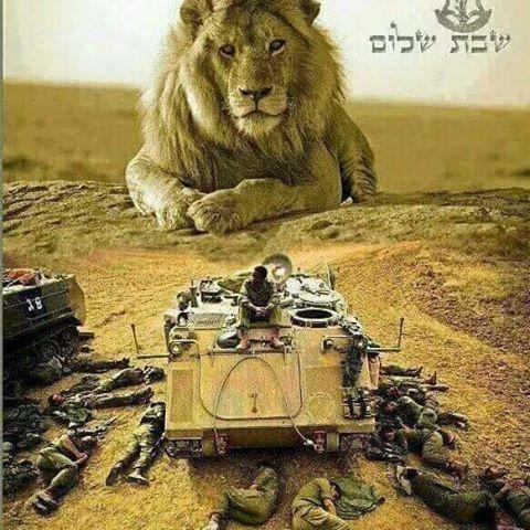 lion-israel