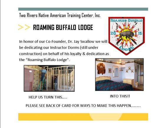 roaming buffalo post card