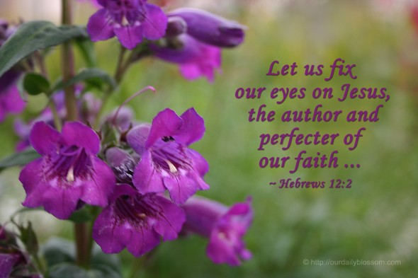 blossom in Jesus