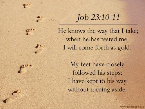 job23_10-11