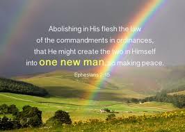 one new man rainbow