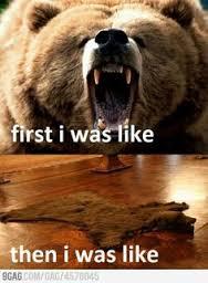 bear first