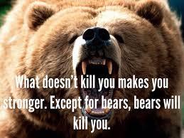bear stronger
