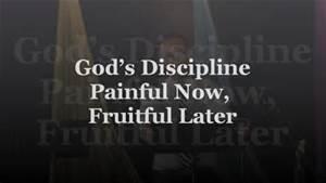 discipline3