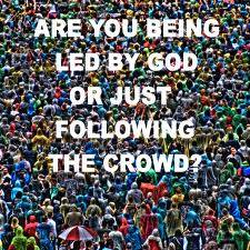 only-one-crowd