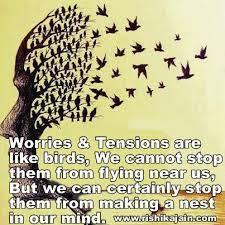 worries-birds