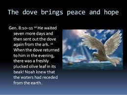 dove-hope